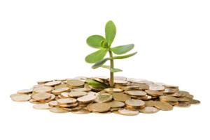 como-investir-em-dividendos-ibovespa