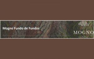 Read more about the article MGFF11: Estudo do Fundo Imobiliário