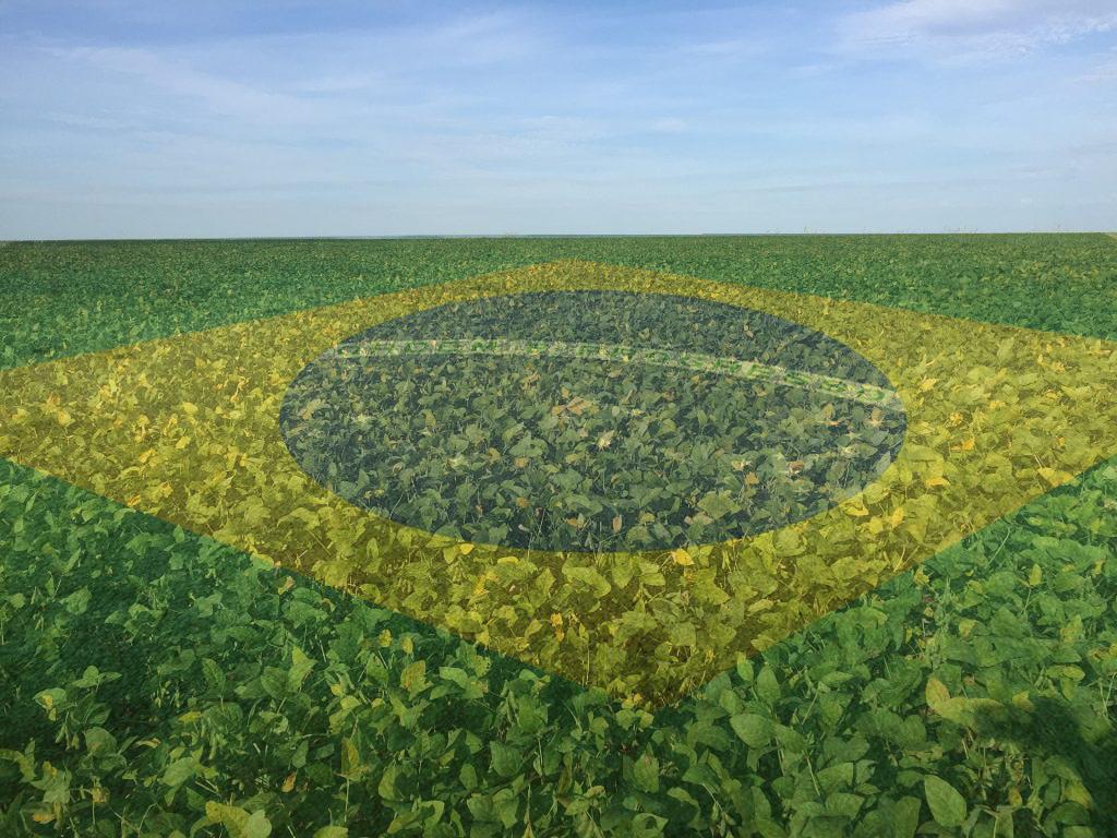 investir-agronegocio