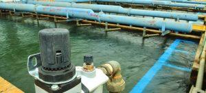 Read more about the article Sabesp, Copasa e Sanepar recuam após aprovação do marco de saneamento básico
