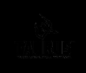 Read more about the article Taurus vê pagamento de dividendos mais próximo após resultados de 2020